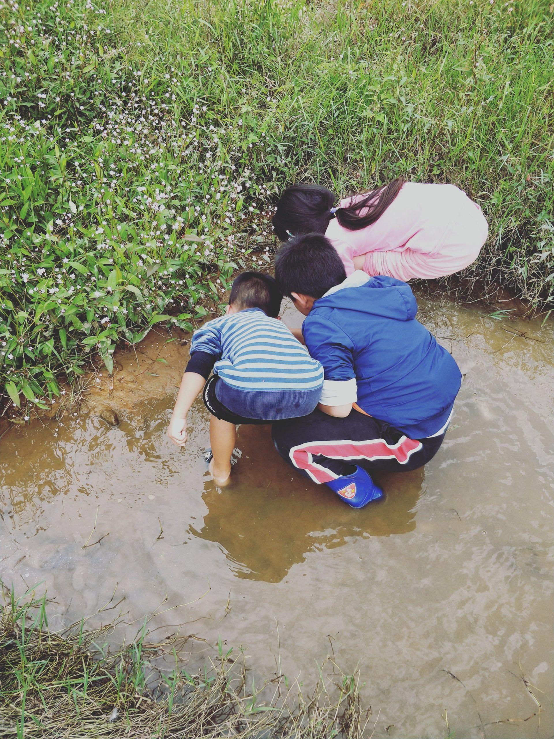 金井河里摸河蚌的学生